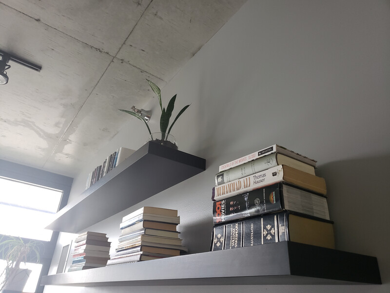 mounted shelves with books and plants