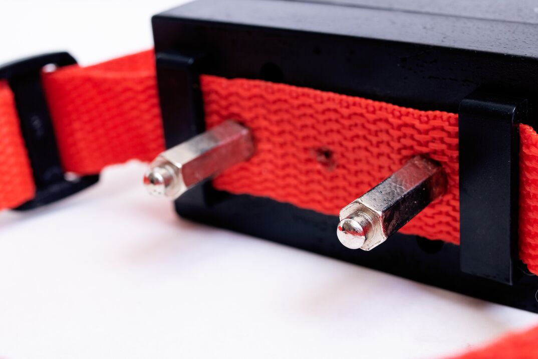 Red collar with electric shock for a dog isolated