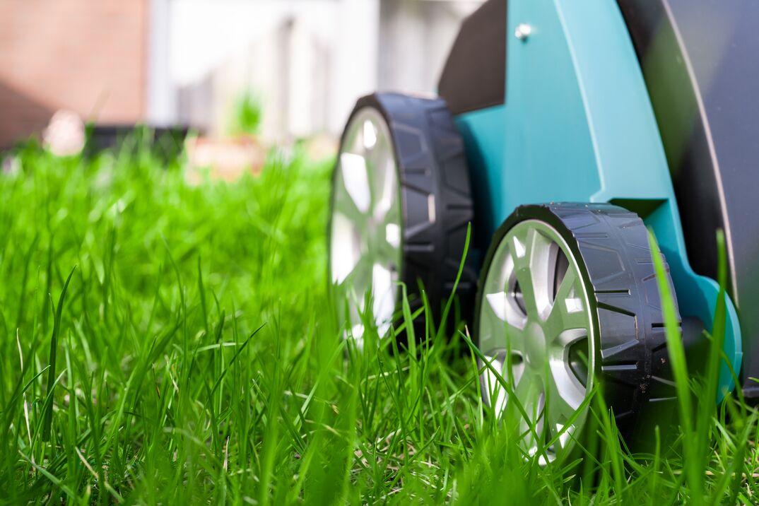 Scarifier on green grass  Work in the garden  scarifier
