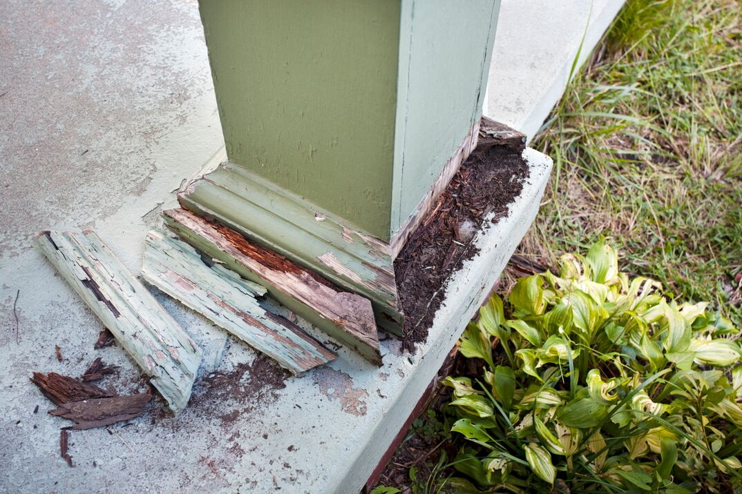 Termite damage to a green support column on a home