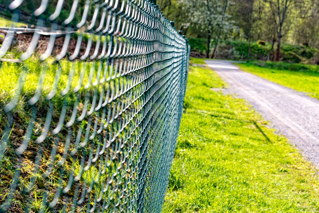 Wire mesh fence fenced plot