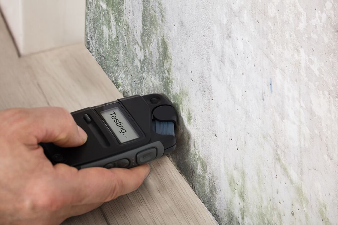 Mold inspection being performed using a moisture meter for mold detection