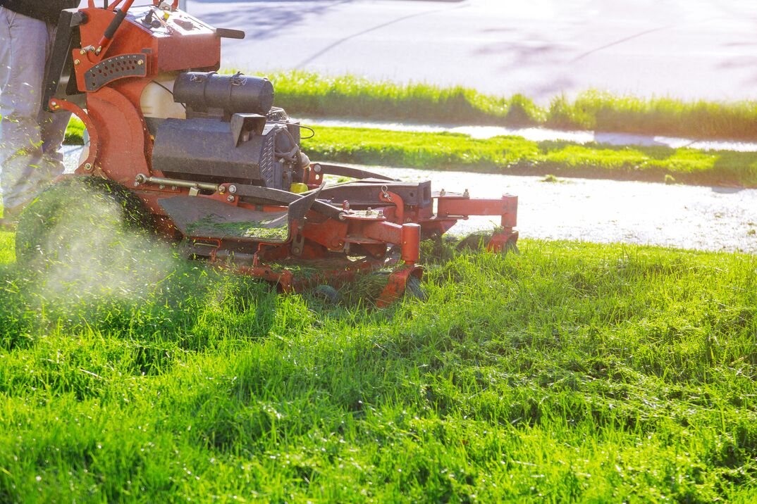 Man worker cutting grass in summer with a lawn mower