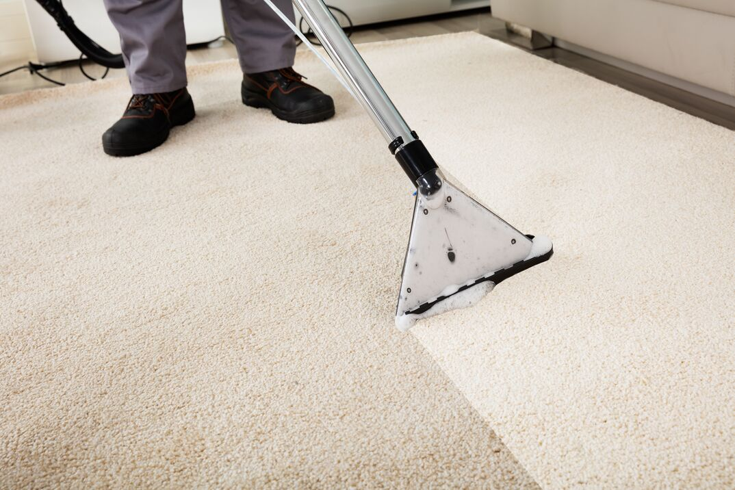 a dirty carpet gets steam cleaned using a professional vacuum and we can see the side-by-side results.