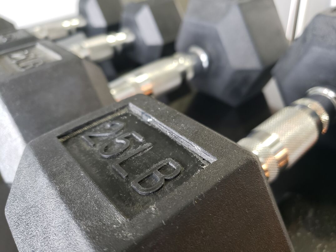 25lb free weights